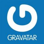 Gravatar – Разметър има значение