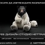 Запознайте се с Неттрио!