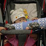 Детски колички от Babyline.bg