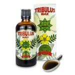 Ползите от сибирския женшен и Нов продукт – Tribulus MAX