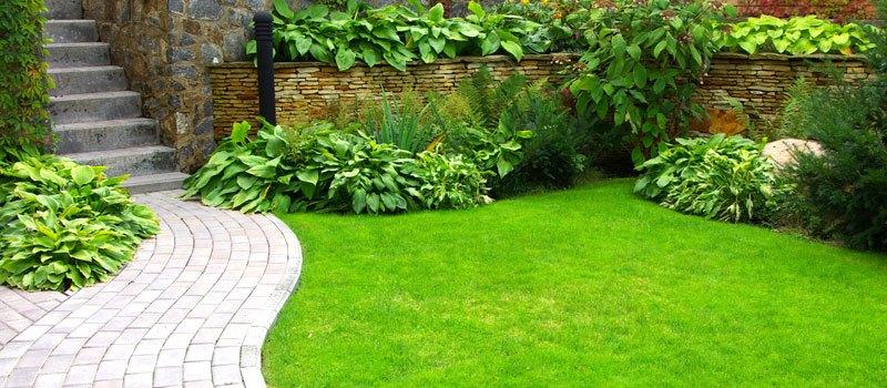 Как да превърнем един двор в омайна зелена градина